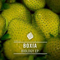 Boxia - Biology EP [YUM022] - http://www.electrobuzz.fm/2015/11/22/boxia-biology-ep-yum022/