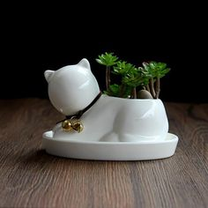 1pc Cartoon Cat Ceramic Succulent Plant Pot with Tray Decorative Bonsai Planter Porcelain Flower Pot Home Garden Decor