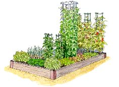 Pre-planned gardens for raised beds