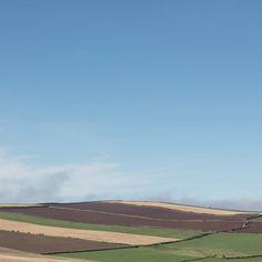 Autumn fields St Bees Head Cumbria. #ukcoastwalk Photo: Quintin Lake www.theperimeter.uk