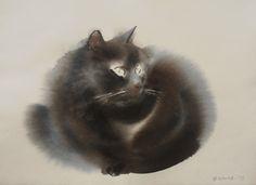 Endre Penovàc e i suoi gatti ad acquerello - G come Gatto