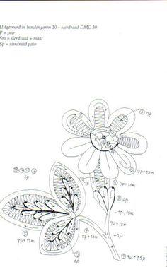 FLORES-květy - heli - Picasa Webalbums