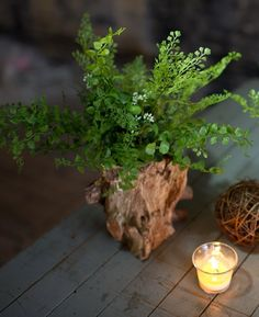 Reclaimed Wood Stump Floral Container | Shop Afloral.com