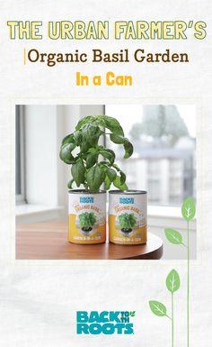 Back to the Roots Herb Garden In Kitchen, Kitchen Herbs, Mushroom Kits, Grow Kit, Diy Garden Projects, Garden Gifts, Urban Farming, Indoor Gardening, Aquaponics