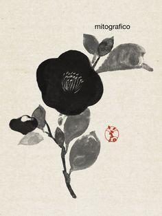 Hidetoshi Mito _ Camellia