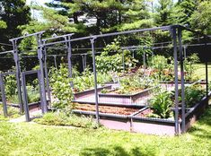 Garden: Cool Vegetable Garden Design Ideas Backyard With Black Wood Fences Front Big Trees Around Green Grass Decoration from Small Vegetable Garden Design Ideas