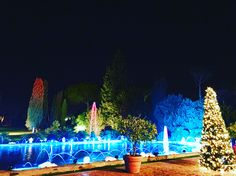 Winter weddings at Villa Dino (Rome) 💍❤  Lighting made by Roma Party Service ❤
