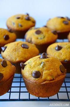 The Best Pumpkin Chocolate Chip Muffins   recipe via justataste.com