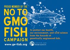 Join the campaign against GE salmon
