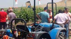 """#Agricoltura. Cracolici: """"In arrivo 15 milioni di euro. Firmato decreto per fondo scorte agricole"""""""