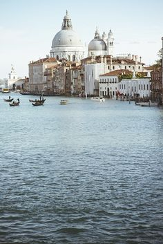 Santa Maria della Salute, Venice. Photo by .natasha.