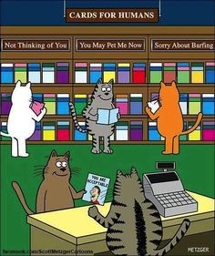 Feline cards are rather limited. ....
