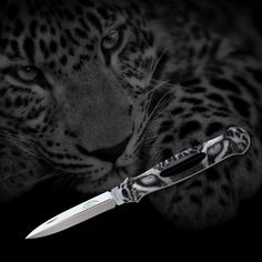 TROMPETER & RITCHI – FINE SCRIMSHAW & GUN ENGRAVING FINE HANDMADE KNIVES - ENGRAVING - RICHARD MAIER - RITCHI MAIER - LUXURY – LEOPARD