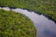 Drilling in the Amazon? Global Financiers Say Yes World Environment Day, Happy Earth, Create Awareness, Earth Day, South America, Brazil, Eco Friendly, River, Sayings