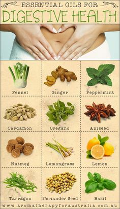 Aromatherapy For Australia: 12 Essential Oils For Good Digestive Health