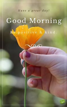 Good morning. Have a great day. Be positive and kind.