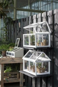 An Expert's Guide On Building The Greenhouse - Indignant corgi Indoor Water Garden, Indoor Plants, Garden Beds, Home And Garden, Diy Greenhouse Plans, Small Greenhouse, Cold Frame, Garden Inspiration, Garden Furniture