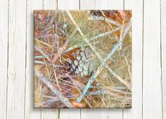 Acorn art Canvas art ready to hang 12/12 by OneDesign4U on Etsy, $39.00