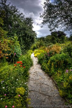 Beatrix Potter's garden, Hill Top, Near Sawrey, England