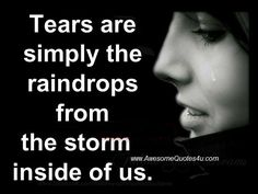 Awesome Quotes: Tears are simply the storm