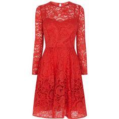 Coast Petite Mallary Lace Dress