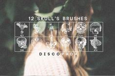 12 Skulls and Anatomy Brushes by Discopada.deviantart.com on @deviantART