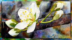 How to Paint the Cherry Blossom in Watercolor, Part 1