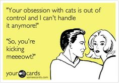 Obsession with cats.
