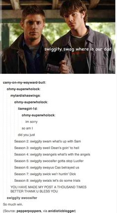 http://soitwouldseem2.tumblr.com/post/52208933672/carry-on-my-wayward-butt-ohmy-superwholock   Supernatural. WIN.