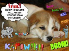 #piZap by CaseyReppert  sleepy dog