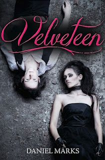 VELVETEEN by Daniel Marks - Check out my author spotlight on my book review site...
