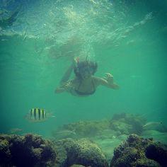 Mergulho | por blogumcafeeumamor