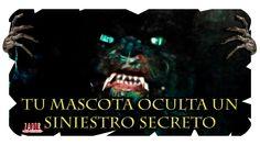 ¿Tu mascota oculta un siniestro secreto? / #MeGustaElMiedo