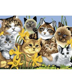 """15 - 1/4""""x11 - 1/4"""" Junior Paint By Number Kit - Cats Montage"""