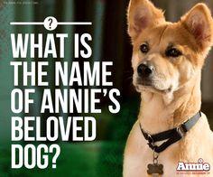 SANDY! - Annie Movie 2014