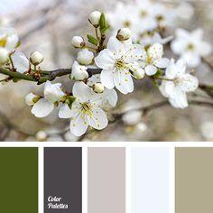 Color Palette #3313