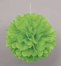 Buy Green Pom Pom Hanging Decoration from Tiger Feet Party. Green Pom Pom Hanging Decoration Add the finishing touch to your party with this hanging pom pom Tissue Paper Ball, Tissue Balls, Tissue Paper Decorations, Pom Pom Decorations, Tissue Pom Poms, Paper Balls, Paper Pom Poms, Green Party Decorations, Brazil