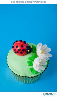 This is a guide about bug themed birthday party ideas. Make your childs next party memorable by planning it around a bug theme.