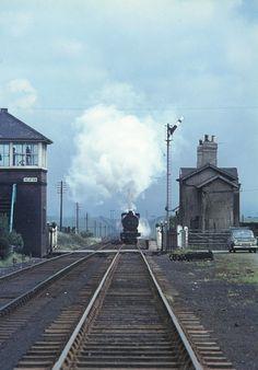 Disused Stations, Train Room, Steam Railway, North East England, Sunderland, Steam Engine, Steam Locomotive, Railroad Tracks, Steamers