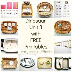 Dinosaur Unit 3 with FREE Printables