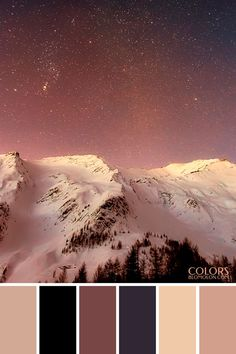 paletas de colores 20 especial de temporada 8