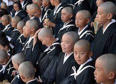 くりくり頭、初々しく 東本願寺で得度式