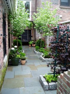 The house-side passage is often wasted and becomes a dreary 'no go' area. The design for a house-side passage shown opposite suits a typical space. Front Yard Garden Design, Small Front Yard Landscaping, Backyard Garden Design, Rooftop Garden, Landscaping Ideas, Yard Design, Small Courtyard Gardens, Small Courtyards, Back Gardens