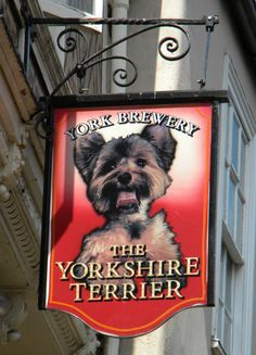 The Yorkshire Terrier. Wonder if dogs allowed!