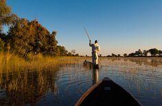 Walking: Botswana Adventure Safari – Okavango Delta    By REI