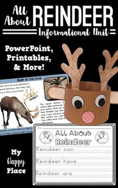 This reindeer unit includes an informational PowerPoint and many activities to get your students learning and writing about reindeer! non-fiction, kindergarten, first grade Kindergarten Writing, Kindergarten Classroom, Classroom Activities, Classroom Ideas, Literacy, Kindergarten Rocks, Class Activities, Christmas Activities, Winter Activities