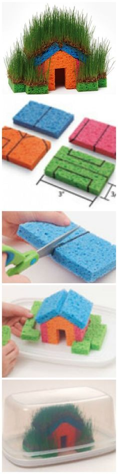 DIY Fun With Grass Seeds And Sponges. Patterns and tips. THis would be so fun to start inside on a rainy day and maybe move outside a little later.