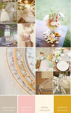 Nicole says she loves this color palette for a vintage inspired wedding.  Take these and add one more...a muted green...let me look