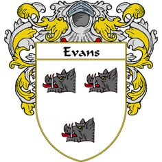 Evans Coat of Arms Ireland   namegameshop.com has a wide variety of products with your surname with your coat of arms/family crest, flags and national symbols from England, Ireland, Scotland and Wale