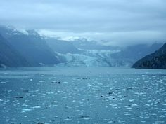 Alaska Cruise: Cruising Through Glacier Bay | Girl-in-Chief Glacier Bay National Park, National Parks, Glacier Bay Alaska, Alaskan Cruise, Princess Cruises, Photo Essay, Heritage Site, Natural Wonders, Scenery